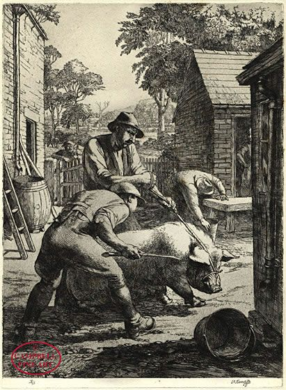 To the Slaughter by Charles Frederick Tunnicliffe