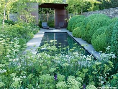 25 beste idee n over tuinvijver op pinterest kleine for Kleine tuinvijver