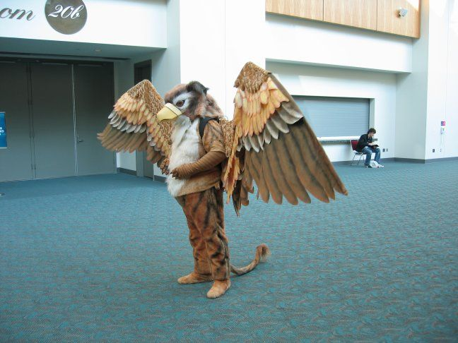 Gryphon Costume At Comicon  Halloween  Pinterest-3082