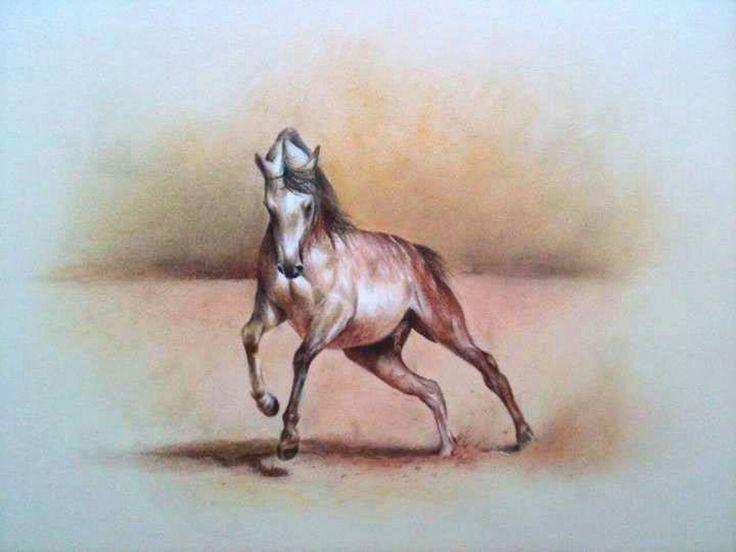 Caballo Árabe - Lápices de Colores sobre papel Canson beige, 60 x 50 cms.