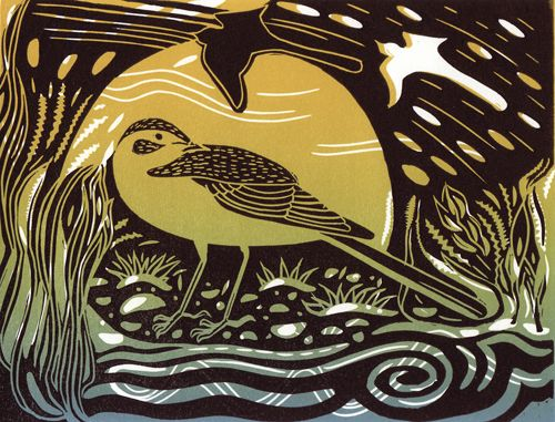 Yellow Wagtail - linocut - Pam Grimmond