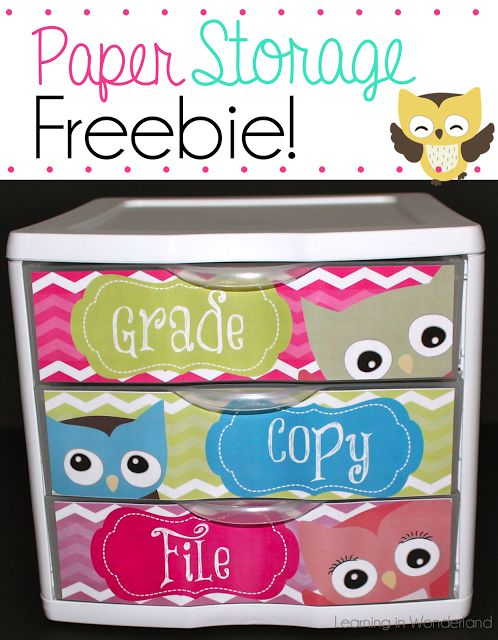 Learning In Wonderland: To Do Drawers - Owl Themed