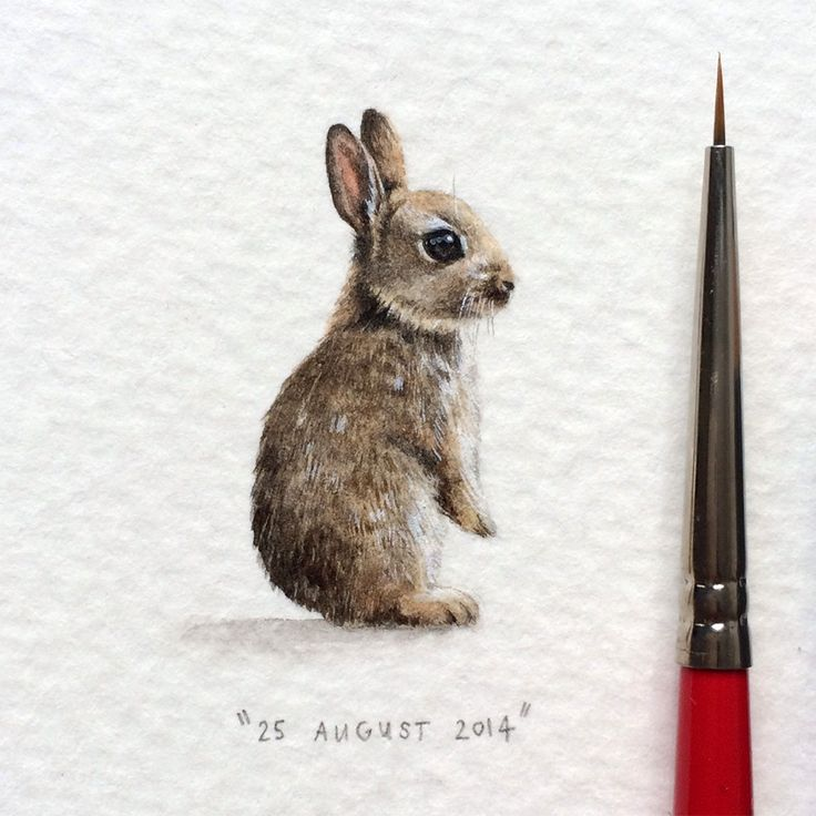 "Miniature Project ""Postcards for Ants"" by Cape Town artist Lorraine Loots"