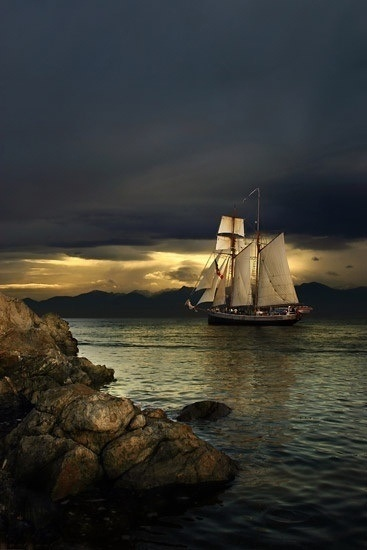 I have long shed my fears...  All the storms of the darkest seas are but a sigh of deference pale and feeble against the passions of a heart aglow... For it takes Love to fill these sails of mine, If I followed you any closer, it would be no secret now, would it?