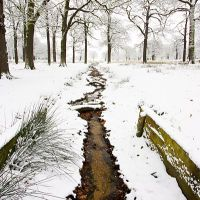 Helen Dixon Professional Landscape Photography: Gallery 8