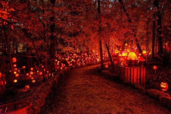 Mobile louisville jack o lantern spectacular louisville ky