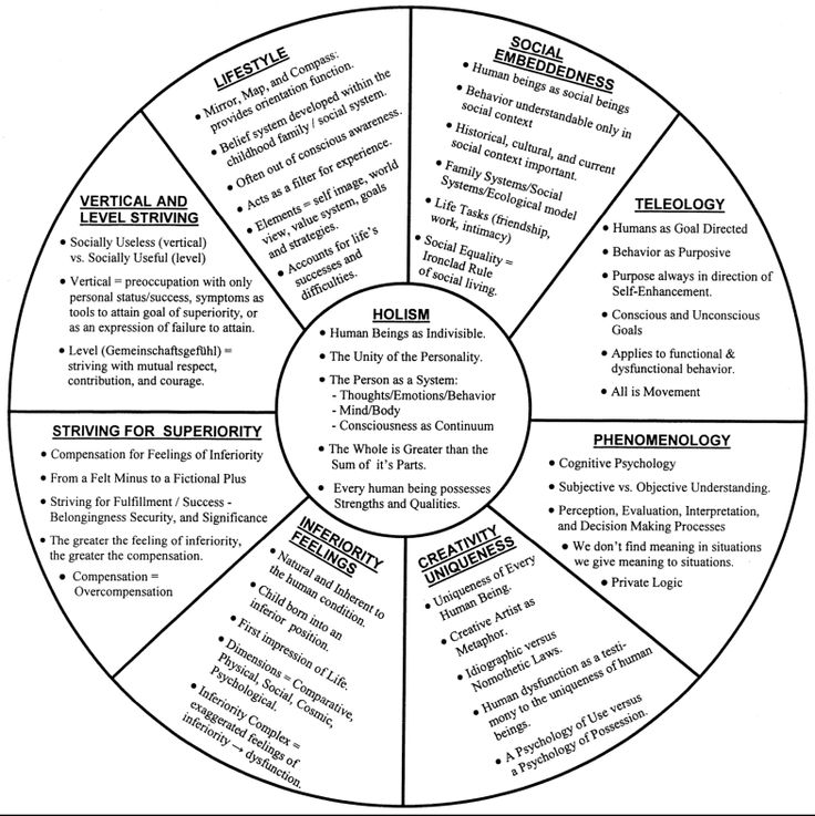 Theory of Human Behavior Chart #psychology