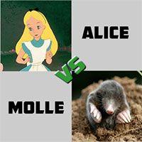 ALICE packs vs MOLLE packs