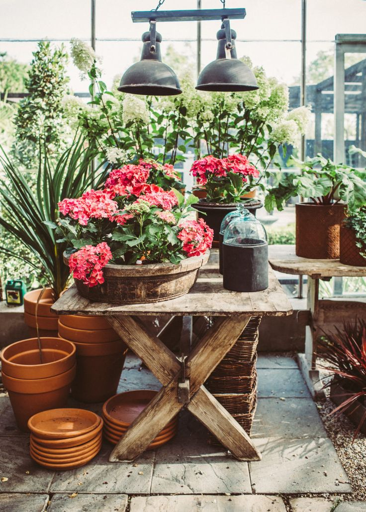 Flowers pots and wooden table Happy