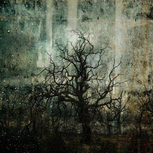 by Troy Ruffels, 2009