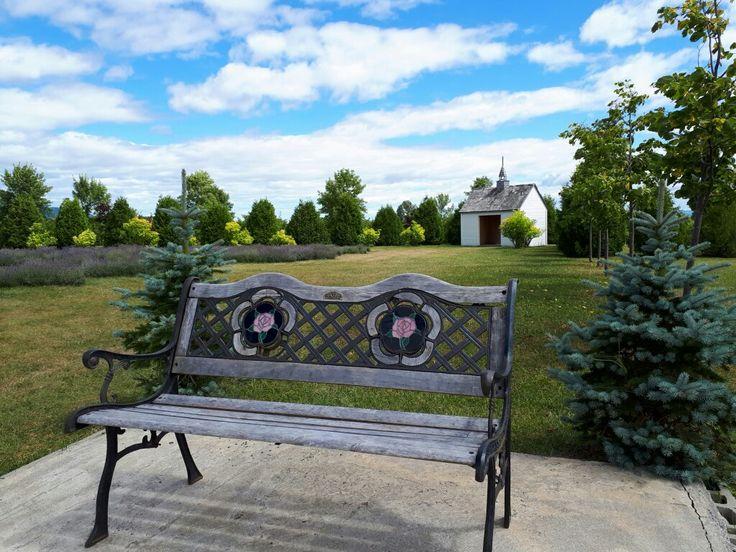 Après-midi à flâner. Relaxing on a beautiful summer afternoon. #nature #summer #Été #lavande #lavender #îledorleans #Quebec