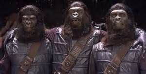 Gorilla Photographer - Planet of the Apes: The Sacred Scrolls