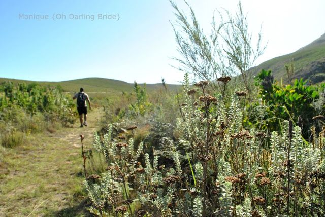 Hiking in Greyton www.ohdarlingdays.co.za