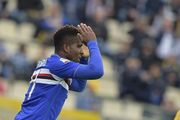 """Sampdoria-Verona, Carbonero: """"Ora aumentiamo la concentrazione"""""""