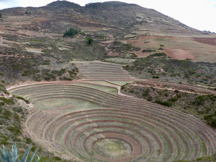 Unusual Inca ruins are to see in Los anillos de Moray - Photo by Janet Williams, Group Escort