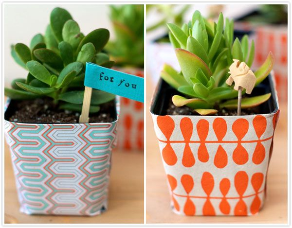 DIY succulent wrappers.