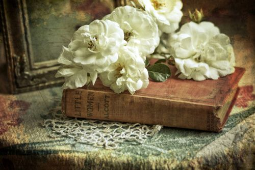 Little Women via SylviaCookPhotography: Photographers, White Flower, White Rose, Antiques White, Little Women, Art Prints, Sylvia Cooking, Blog, Photography