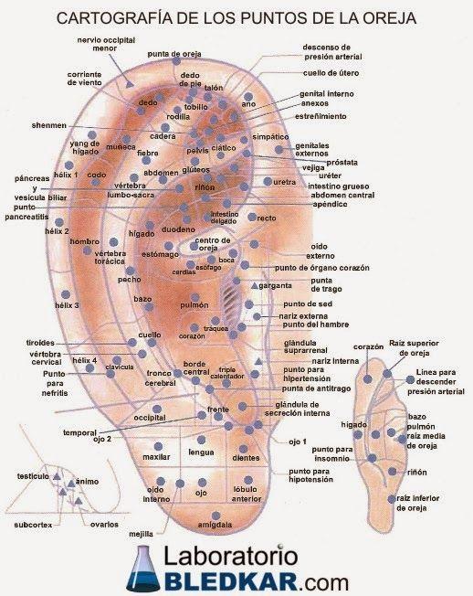 Cursos, Palestras,Terapias Holísticas, alternativas, complementares, massagem,acupuntura, reiki, florais, animais, EFT, TFT, Fitoterapia