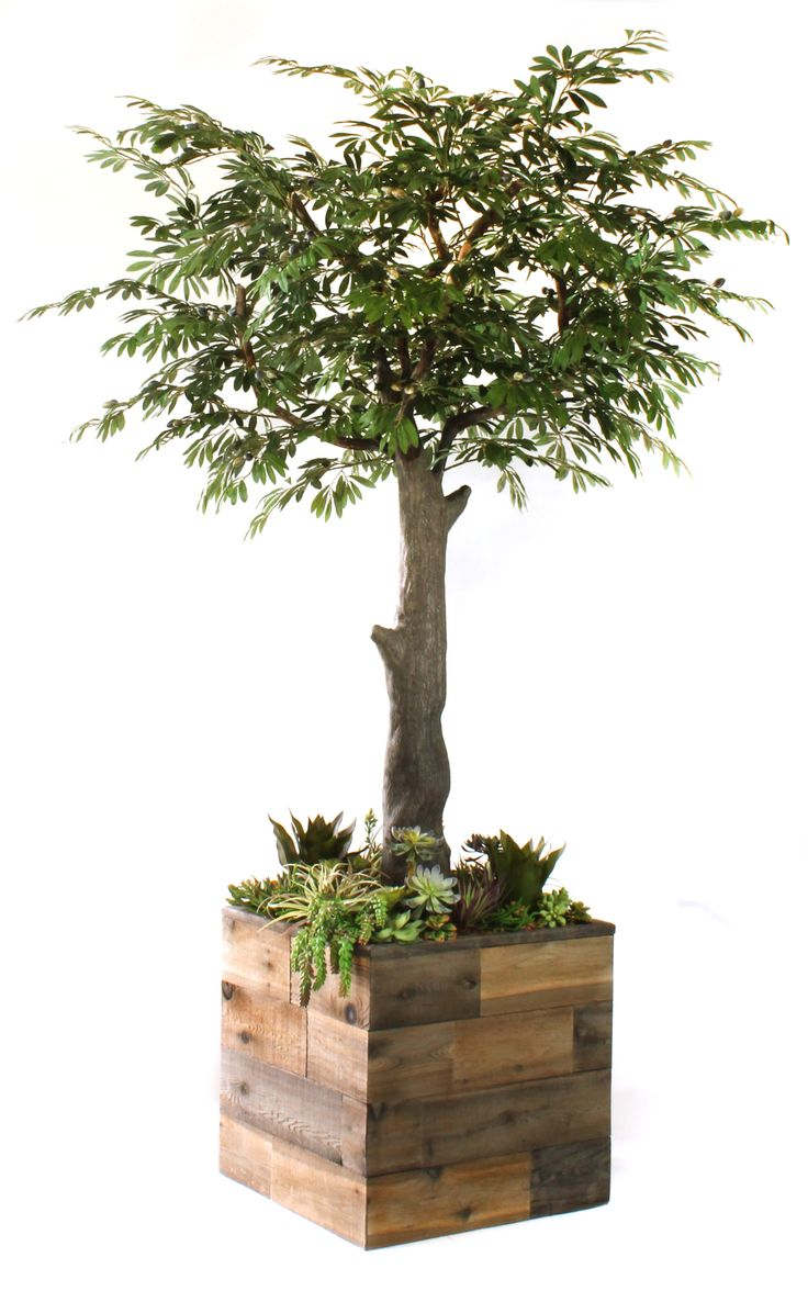 Dalmarko Designs Fully Fabricated Handcrafted Artificial Olive Tree And Succulent Garden In