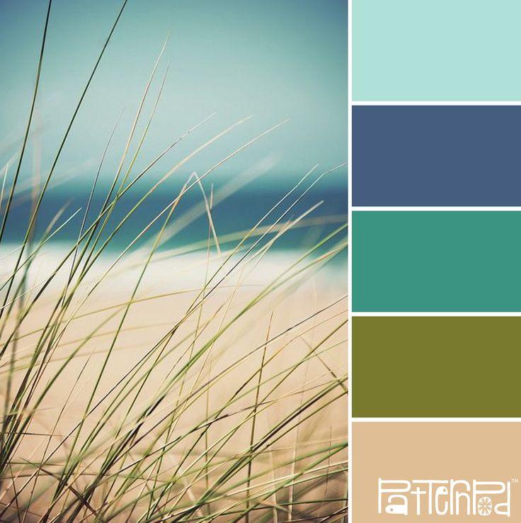 Color Palette - Beach Grass