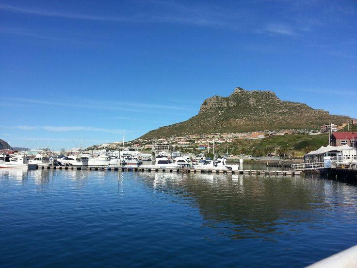 Hout Bay in Western Cape
