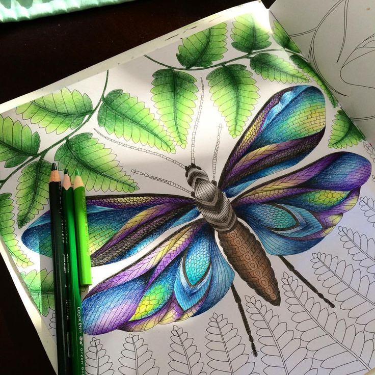 Take Time To De Stress Things Like Adult Colouring Books