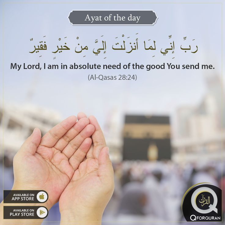 **AYAT OF THE DAY** My Lord, I am in absolute need of the good You send me. (Al-Qasas 28:24) #AyatOfTheDay #Quran #QforQuran