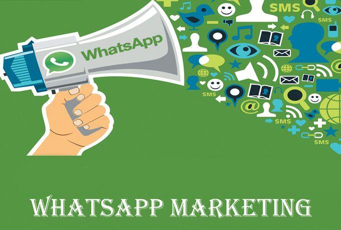 How to do whatsapp marketing