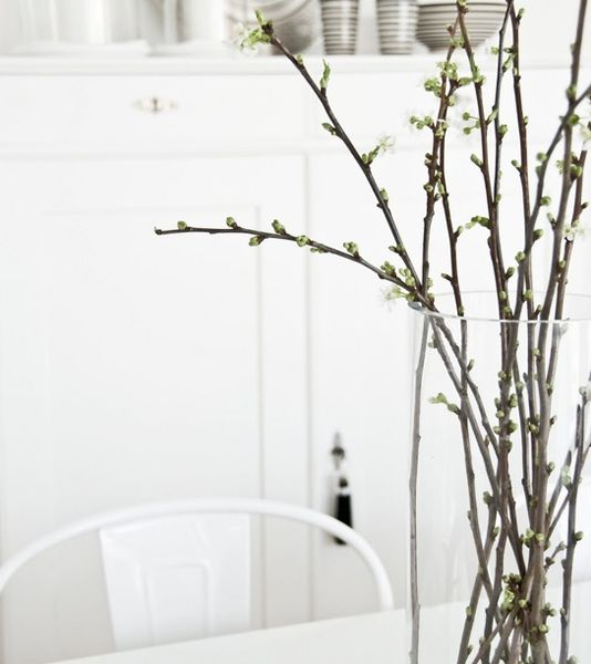 grenar blommor blomster arragemang inspiration tips ide dekorera grönt växter