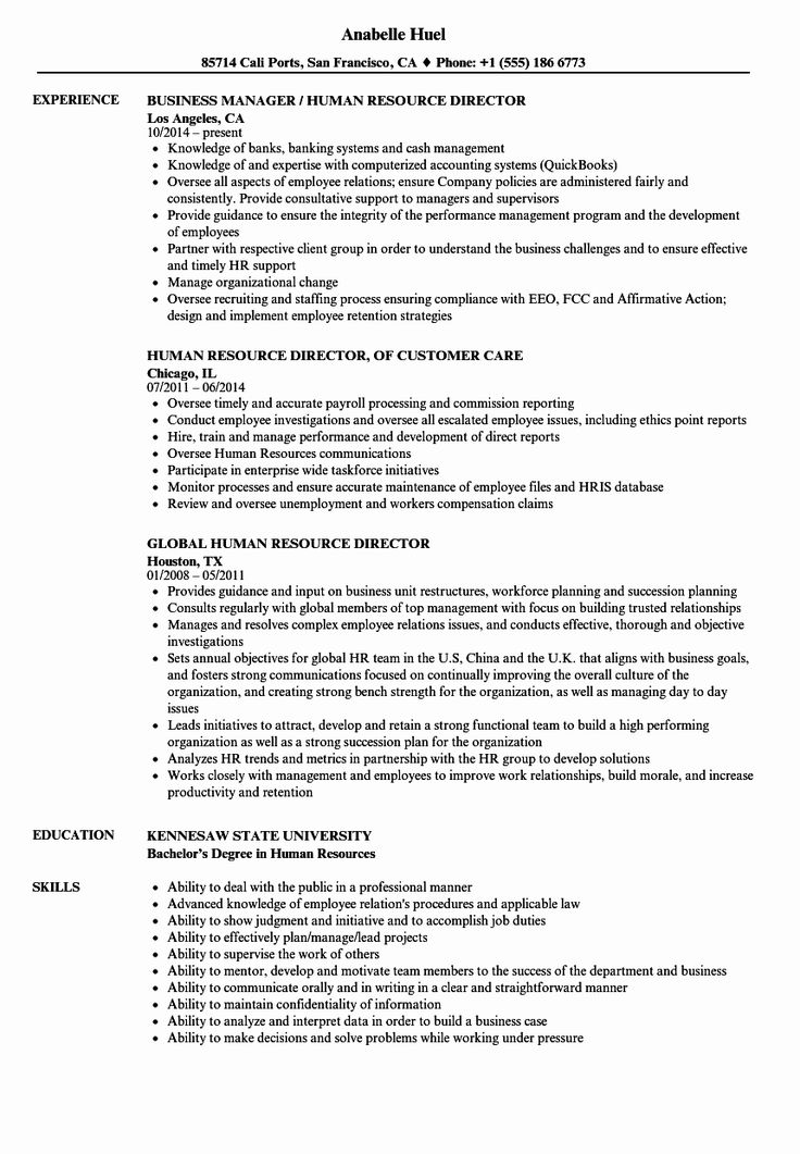 20 human resources director resume in 2020  with images