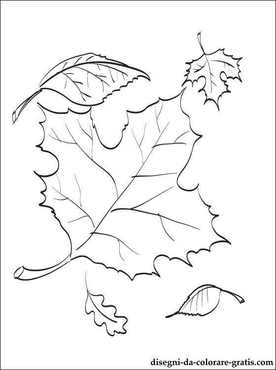 Disegno di foglie d'autunno da colorare | Disegni da colorare gratis