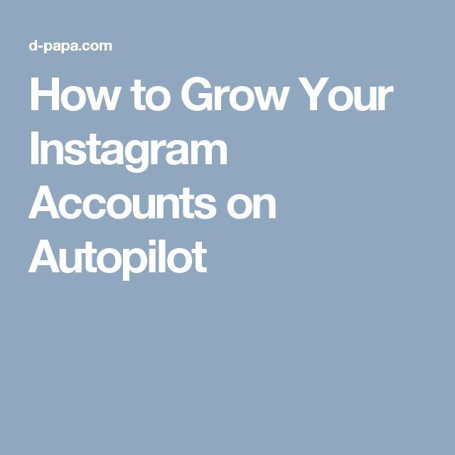 How to Grow Your Instagram Accounts on Autopilot