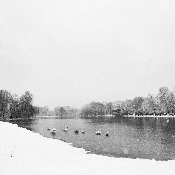 Zima nad Zalewem w Nowej Hucie. fot. Marcin Pawlik
