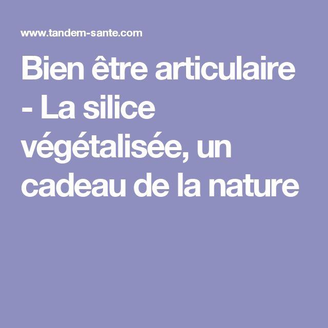 Bien être articulaire - La silice végétalisée, un cadeau de la nature