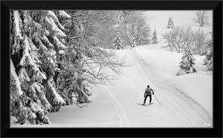 Randonnées en noir et blanc...: Ski de fond sur le plateau de Retord JURA FRANCE
