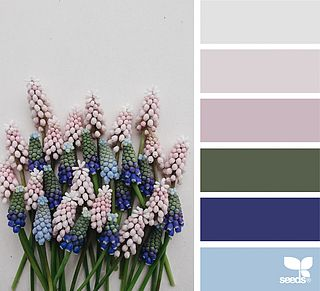 Great palette for spring or summer! Tip: Use the olive green/greys as your netural base, then pair with one of the other colors (lavender, cobalt or light blues) for each family member!