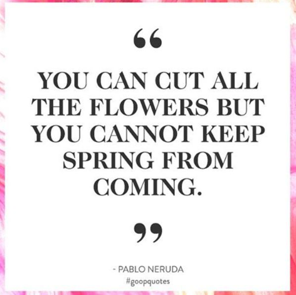 """""""You can cut all the flowers but you can't keep spring from coming."""" - Pablo Neruda"""