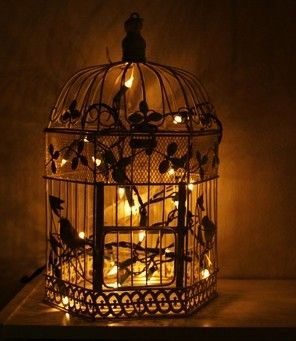 Lighted birdcage.