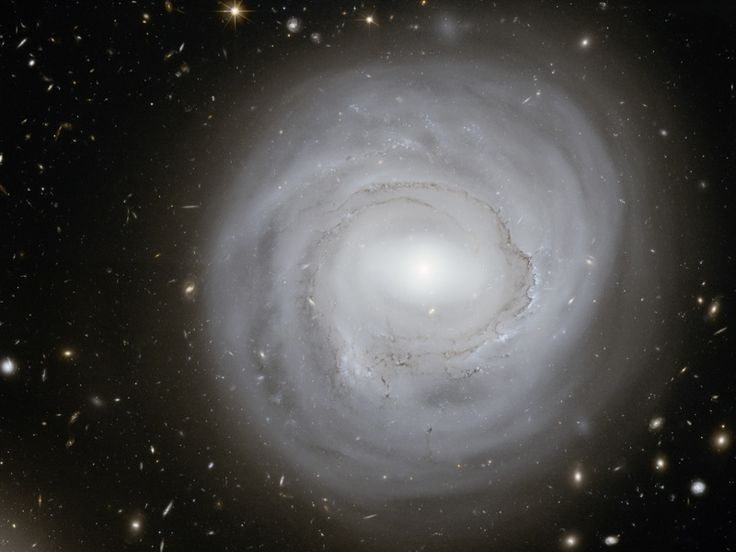trainers at    Galaxy     Formation    Star Spirals God  Galaxies Love  NGC the Science and Anemic Edge      kids