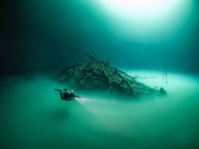 British Diver Made An Incredible Find Underwater (6 pics)