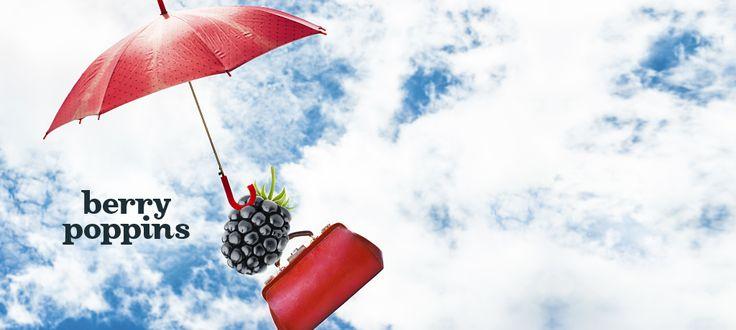 berry poppins davidstea - Google Search