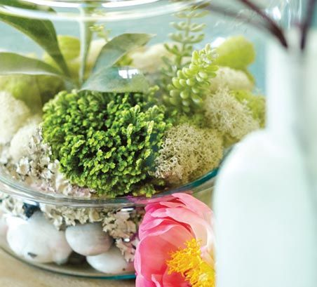 How to Make a Simple Terrarium | World Market