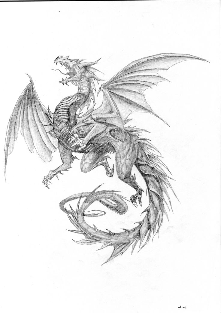Драконы с крыльями картинки тату