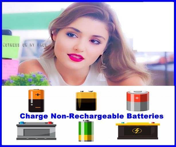 Alkaline Batteries My Wordpress Blog Alkaline Battery Rechargeable Batteries Batteries