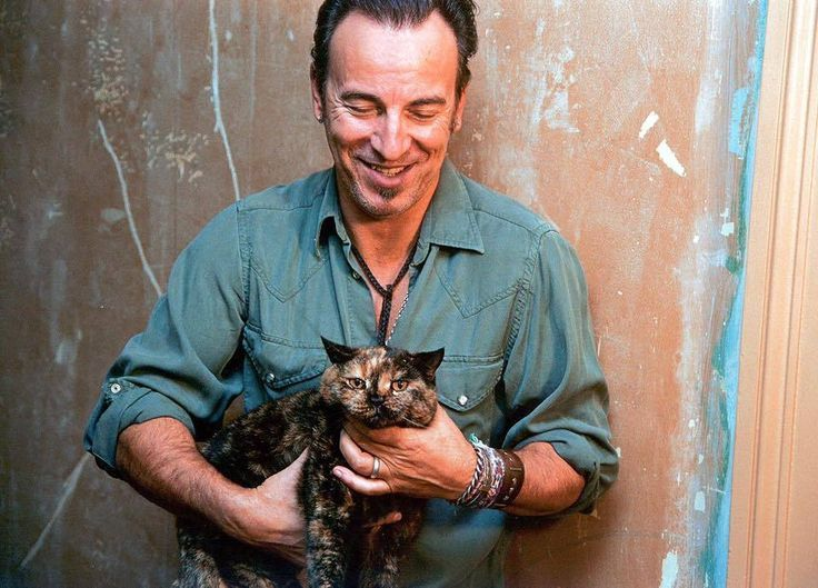 Bruce Springsteen and cat