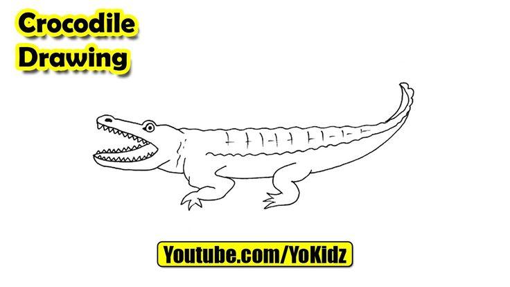 How to draw CROCODILE easy  Crocodile Drawing from YoKidz  #YoKidz #Drawing #PencilDrawing #Generaldrawing #Like4like #Likeforlike #Share4share #Shareforshare #Draw #DrawCrocodile #Blackandwhite #Crocodile