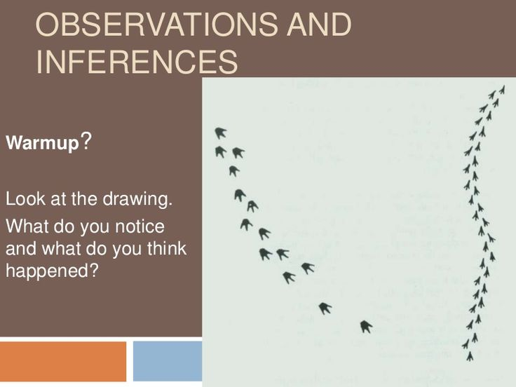 observations-and-inferences-1942083 by Joshua Grasso via Slideshare