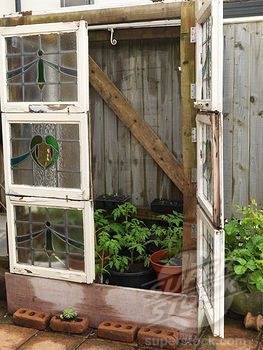 Alys FowlerÕs 18m x 6m, organic garden. On terrace, tomato plants thrive in improvised greenhouse made from stained glass window panels rescued from a rubbish skip.  OK lead me  to that dumpster now!!
