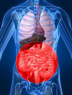 Διατροφή και νόσος του Crohn • Nutripedia