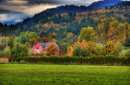 Barn near Clayburn Village, Abbotsford, BC on the BEAUTIFUL fall colored hillside!